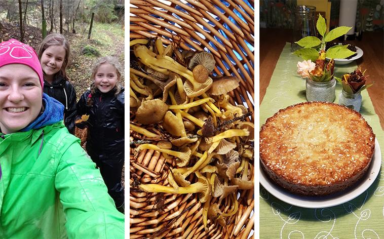 Barn och ledare i skogen, trattkantareller och toscakaka